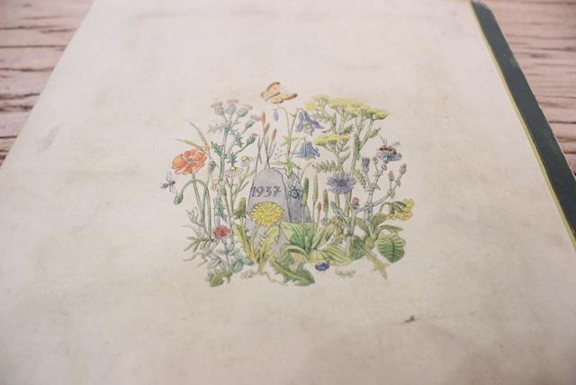 ドイツヴィンテージの植物スクラップ本の裏表紙