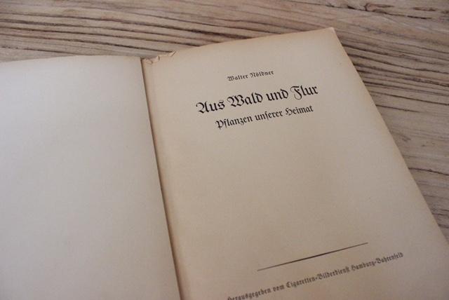 ドイツヴィンテージの植物スクラップ本の内部