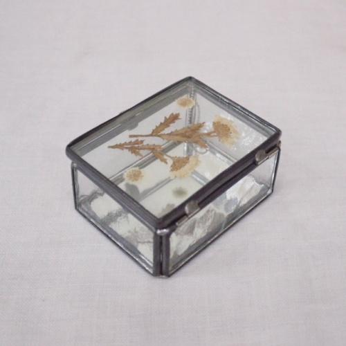 英国ヴィンテージの押し花のガラスケース