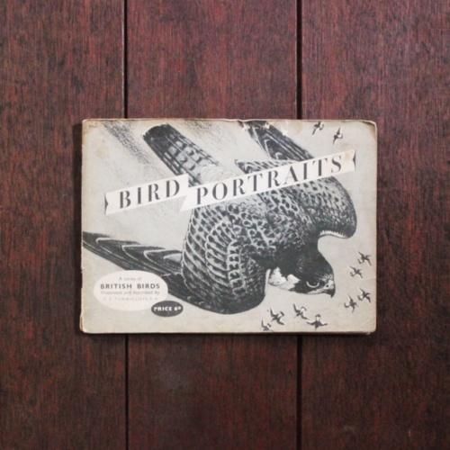 英国ヴィンテージの鳥のカードアルバム表紙