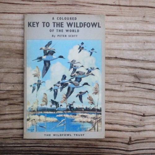 イギリスヴィンテージの鳥の本