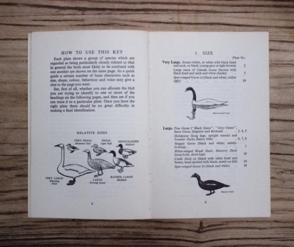 イギリスヴィンテージの鳥の本の内部