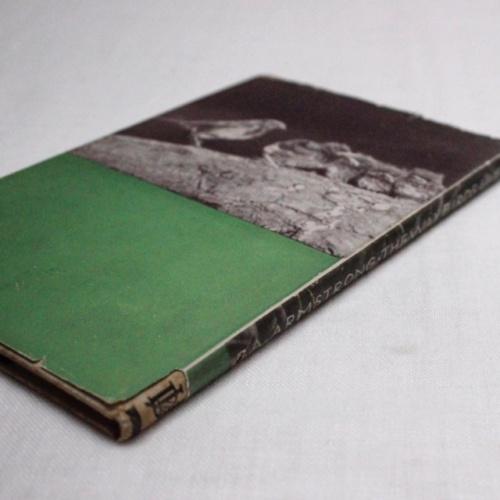 イギリスヴィンテージの鳥の本の裏表紙