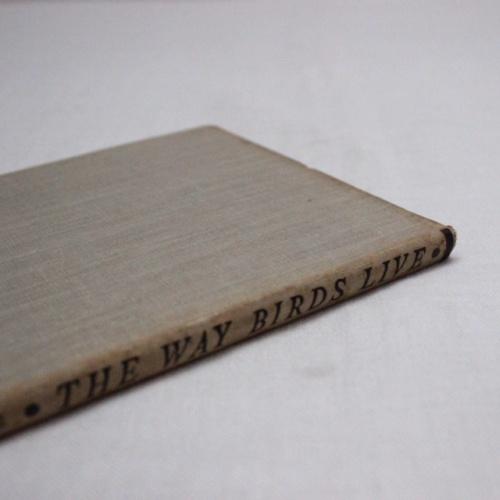 イギリスヴィンテージの鳥の本の背表紙